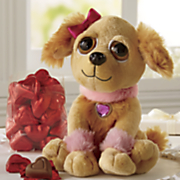 Lady Pup With Chocolates