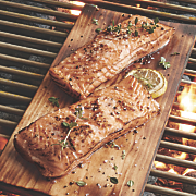 Salmon Filets Plus Grilling Plunks