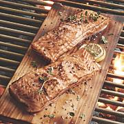 Salmon Filets Plus Grilling Plunks