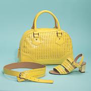 Nastacia Bag, Shoe and Belt