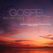 Gospel Any Way You Like It CD