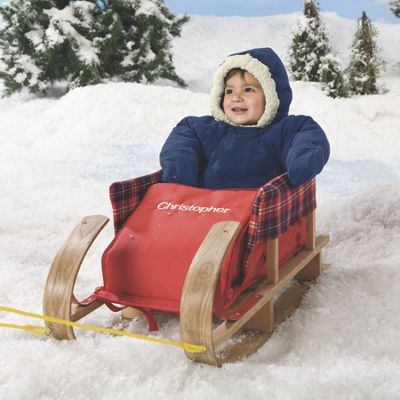 Cozy Rider Sled Cushion
