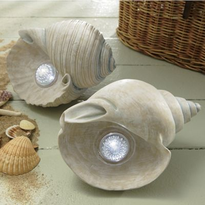 Solar Seashell Lights
