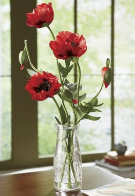 Poppy Arrangement