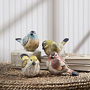 songbird quartet