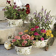 Set Of 3 Oval Planters