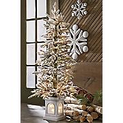 lit porch tree