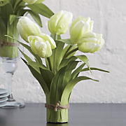 Set of 2 Tulip...