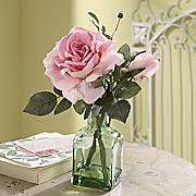 presentation rose