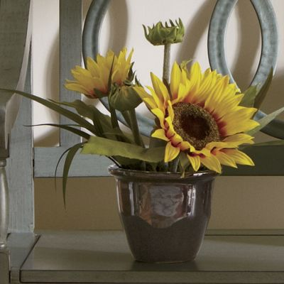 Sunflower Floral