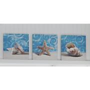 set of 3 seashell prints