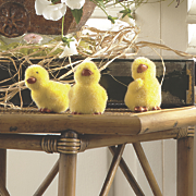 set of 3 fuzzy ducklings