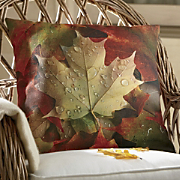 Sugar Maple Indoor/Outdoor Pillow