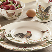 16 piece southern rooster dinnerware set