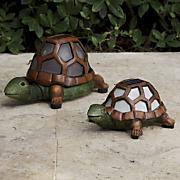 Set Of 2 Solar Turtle Lights