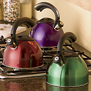 Colored Ss Tea Kettle