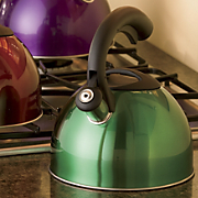 Colored Ss Tea Kettle