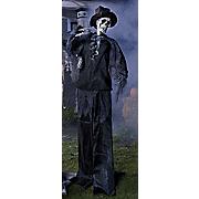skeleton groom