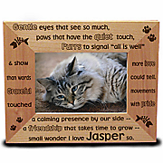 Gentle Kitty Frame