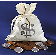 Bankers Bag Old Rare Coins