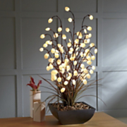 Lighted Silver Dollar Arrangement