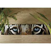 Tiger Eyes Canvas...