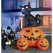 12-Foot Black Cat...
