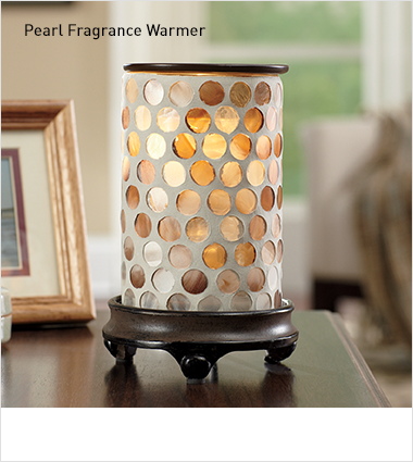 Fragrance warmer and wax melts