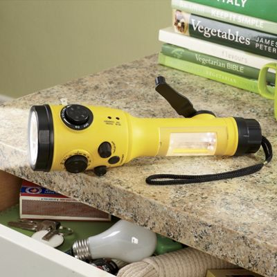 Emergency Flashlight/Radio with Hand Crank