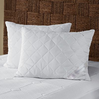 Sleep Connection 2-Pack Memory Foam Cluster Pillows by Montgomery Ward