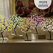 Lit Cherry Tree