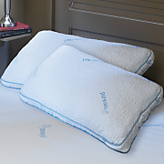 set of 2 pure gel pillows