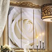 cream rose tryptic art