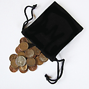 Bag of Coins with Buffalo Nickel