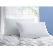 2-Pack Antimicrobial Jumbo Pillow