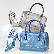 Libertine Lucite Bag and Shoe