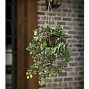 lighted hanging ivy