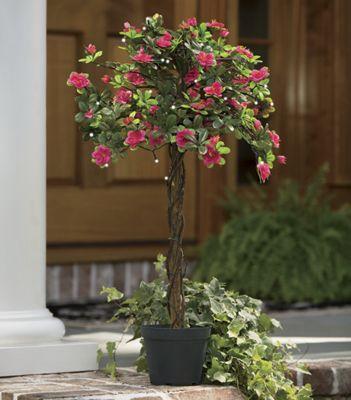 Lighted Azalea Tree