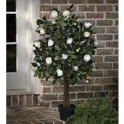 Lighted White Rose Tree