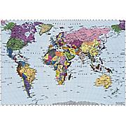 world map mural 7
