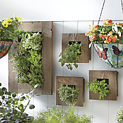 Rustic Wall Single Planter