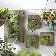 rustic wall single planter