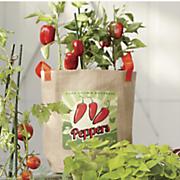 10 gal peppers bag