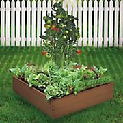 vegetable garden in a box