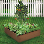Set of 4 Vegetable Seed Mats