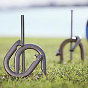 horseshoe set