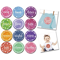 painted pixie monthly baby milestone stickers