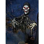 skeleton curtain