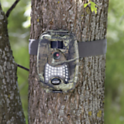 8.1 MP Trailcam by Coleman