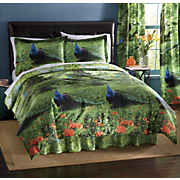 peacock park comforter set